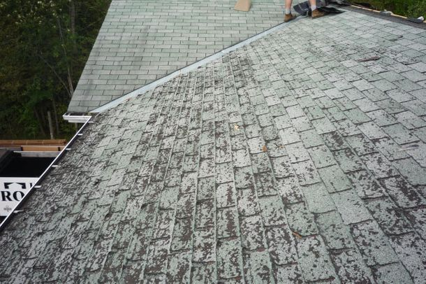 Shingles before